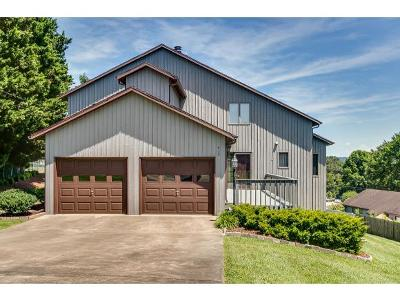 Kingsport Single Family Home For Sale: 413 Cedar Crest Drive