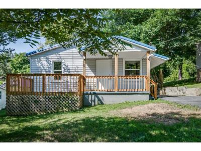 Hawkins County Single Family Home For Sale: 113 Messick Ave.