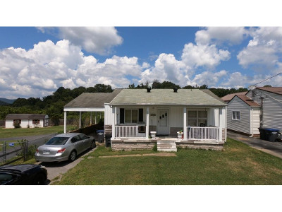 Kingsport Single Family Home For Sale: 443 Roan St