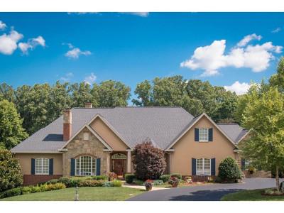 Bristol VA Single Family Home For Sale: $1,365,000