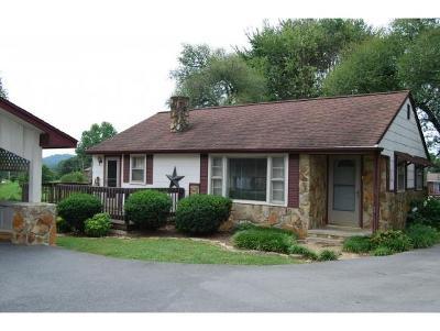 Kingsport Single Family Home For Sale: 5501 Odd Fellow Rd.