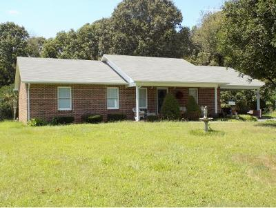 Hawkins County Single Family Home For Sale: 167 Austin Drive