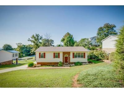 Kingsport Single Family Home For Sale: 2053 Louita Avenue