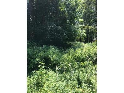 Johnson City Residential Lots & Land For Sale: 155 Snyder Rd.