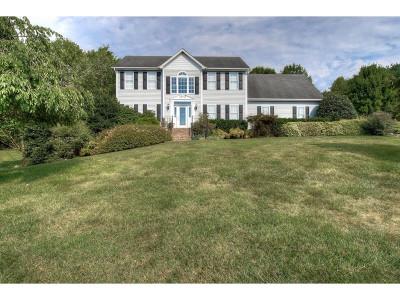 Jonesborough Single Family Home For Sale: 109 Heritage Ct