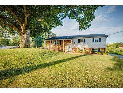 Johnson City Single Family Home For Sale: 1700 Sundale Rd