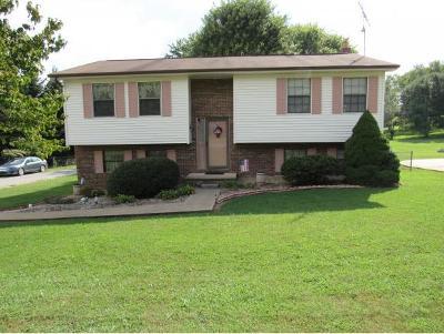 Greene County Single Family Home For Sale: 130 Hopeville Ave