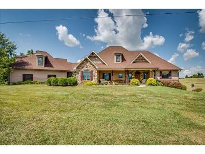 Jonesborough Single Family Home For Sale: 293 Bennett Rd