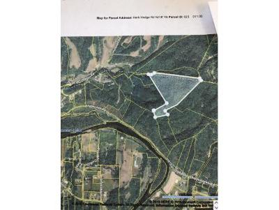 Johnson City Residential Lots & Land For Sale: TBD Herb Hodge
