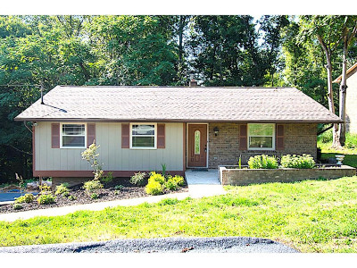 Kingsport Single Family Home For Sale: 500 Merman Road