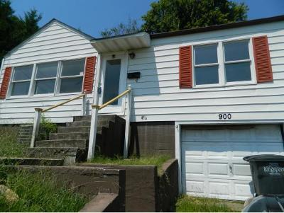Kingsport Single Family Home For Sale: 900 Tip Top