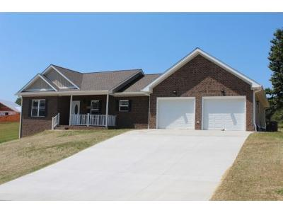Greeneville TN Single Family Home For Sale: $299,900