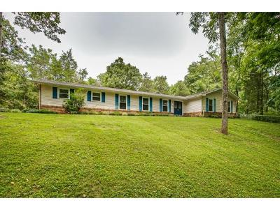 Kingsport Single Family Home For Sale: 229 Castaway
