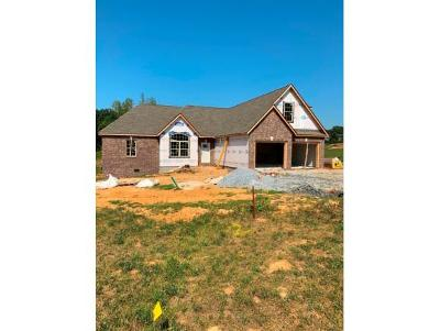 Jonesborough Single Family Home For Sale: 17 Planted Stone Court