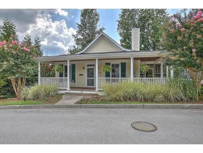 Jonesborough Single Family Home For Sale: 33 Walton Street