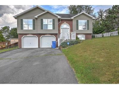 Jonesborough Single Family Home For Sale: 224 Chimney Top Lane