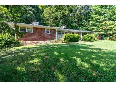 Bristol Single Family Home For Sale: 468 N Pinecrest Lane
