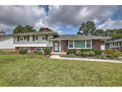 Kingsport Single Family Home For Sale: 2221 Hermitage Drive