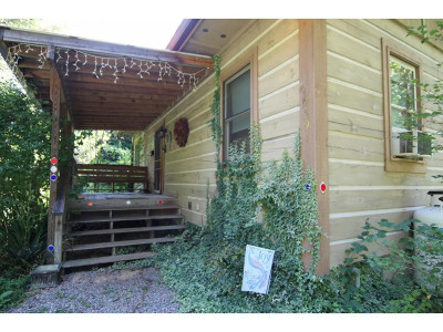 Butler Single Family Home For Sale: 7591 Roan Creek Road