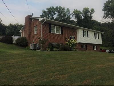 Elizabethton Single Family Home For Sale: 133 Rainbolt Ln