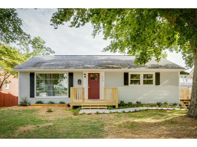 Kingsport Single Family Home For Sale: 1018 Catawba Street