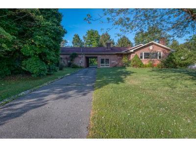 Bristol TN Single Family Home For Sale: $175,000