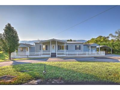 Greene County Single Family Home For Sale: 725 Shakerag Rd.