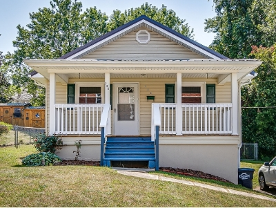 Kingsport Single Family Home For Sale: 306 Virgil Ave
