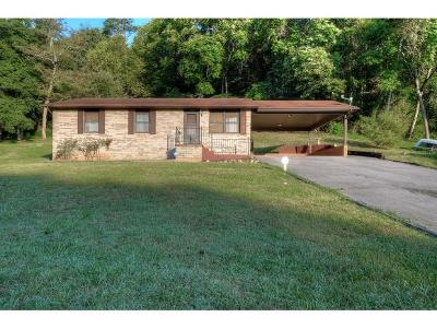 Kingsport Single Family Home For Sale: 1647 Forest View Drive