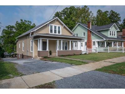 Bristol Single Family Home For Sale: 1124 Georgia Ave.