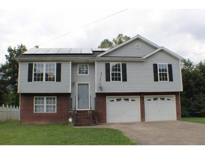 Kingsport Single Family Home For Sale: 5622 Orebank Rd.
