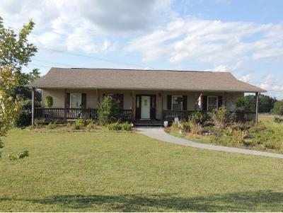 Hawkins County Single Family Home For Sale: 114 Robertson Creek Road