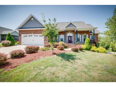 Jonesborough Single Family Home For Sale: 397 Sweetgrass