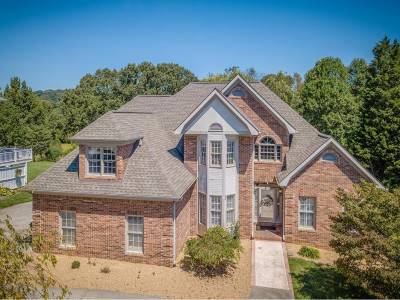 Kingsport Single Family Home For Sale: 257 Park Ridge Court