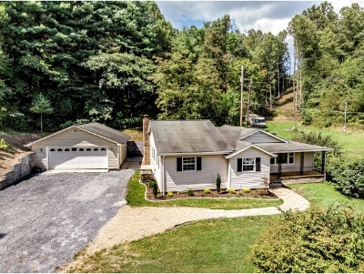 Elizabethton Single Family Home For Sale: 289 Chambers Dr