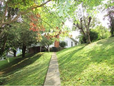 Elizabethton Single Family Home For Sale: 806 Beech Street