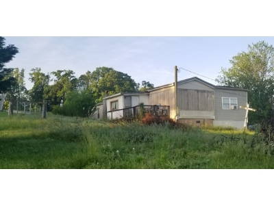 Greene County Single Family Home For Sale: 225 Shaw