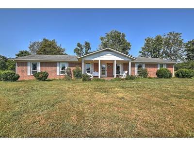 Greene County Single Family Home For Sale: 665 Milburnton Rd.