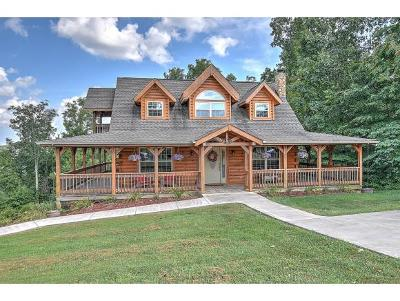 Kingsport Single Family Home For Sale: 513 Wood View Court