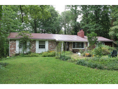 Bristol TN Single Family Home For Sale: $169,500