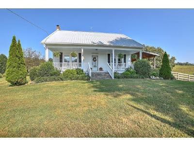 Greene County Single Family Home For Sale: 1485 Mary Lamons Road