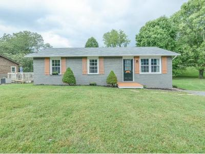 Kingsport Single Family Home For Sale: 253 Cedar Branch Rd