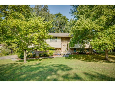 Kingsport Single Family Home For Sale: 2316 Kings Bay Dr