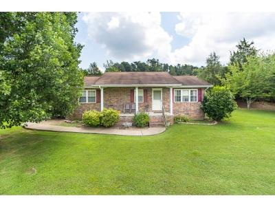Greene County Single Family Home For Sale: 119 McCartt Loop