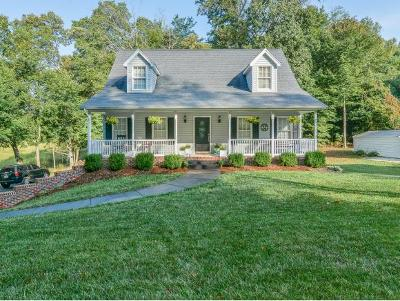 Hawkins County Single Family Home For Sale: 524 Old Village Court