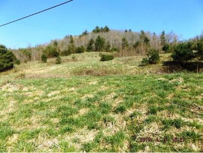 Residential Lots & Land For Sale: 3288 Sink Valley Road