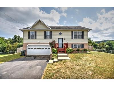 Jonesborough Single Family Home For Sale: 34 Mockingbird Ct