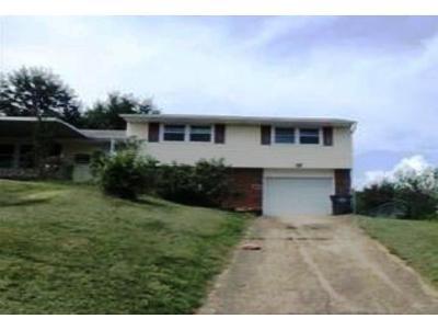 Kingsport Single Family Home For Sale: 1210 Sevier Terr Dr
