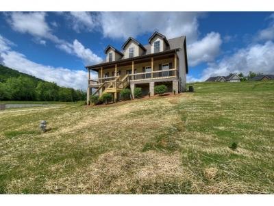 Jonesborough Single Family Home For Sale: 1398 Peaceful Drive