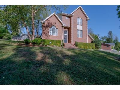 Greeneville TN Single Family Home For Sale: $225,000